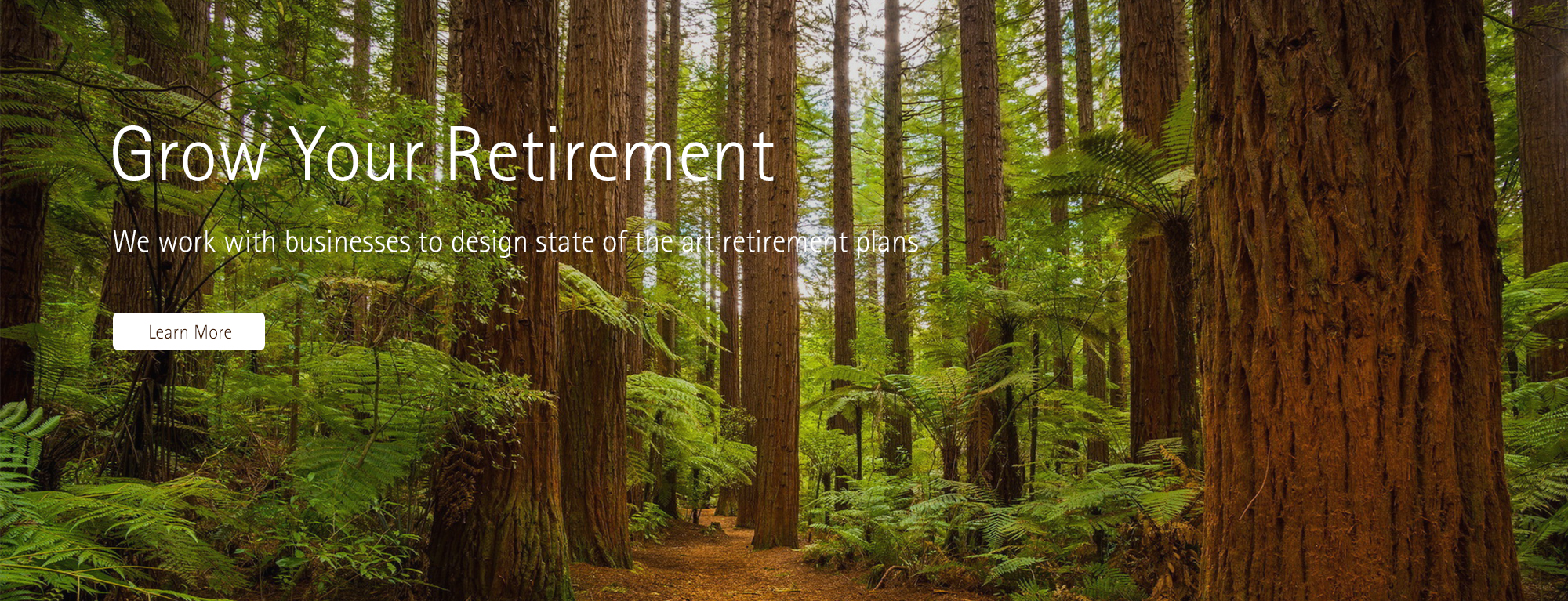 Setting up a retirement plan for your employees